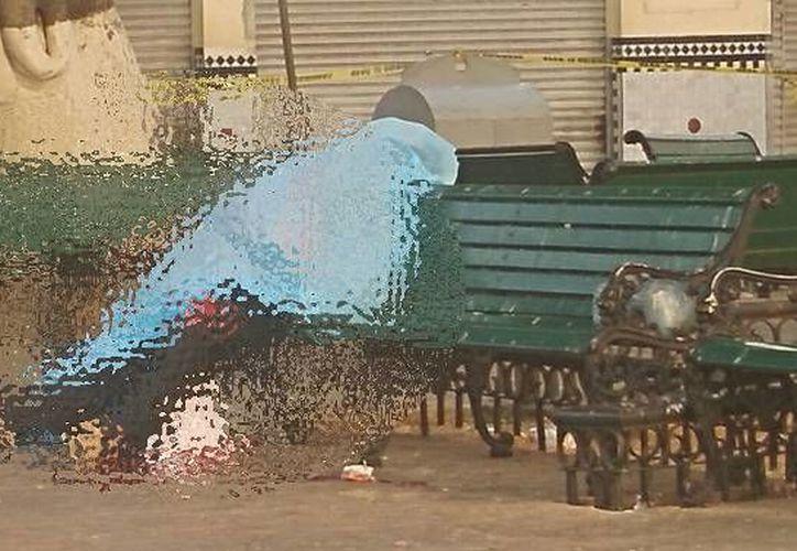 Este viernes, el cuerpo de un hombre de aproximadamente 40 años apareció en una banca del parque Eulogio Rosado, y debajo de él había un extenso charco de sangre. (A. Pallota/ SIPSE)