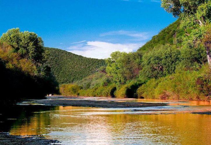 Las consecuencias del daño al Río Sonora por el derrame de ácido sulfúrico todavía están etapa de análisis. (panoramio.com)