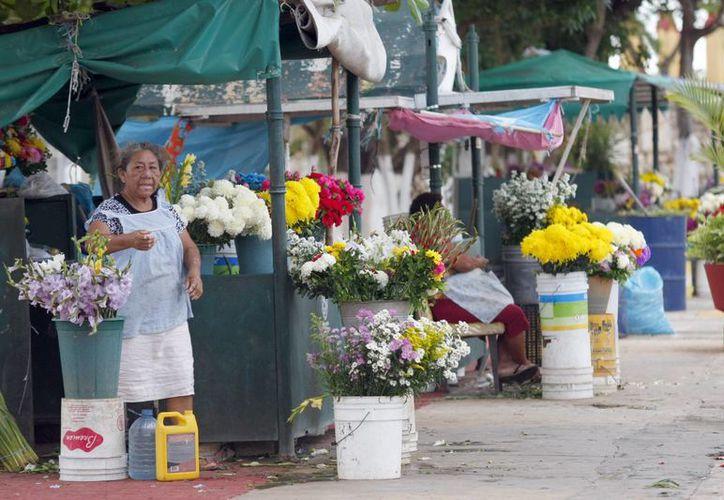 Los operativos de vigilancia de Profeco con motivo del 'Día de Muertos', y que incluyen florerías y puestos de venta de flores en cementerios, comienzan esta semana. (SIPSE)