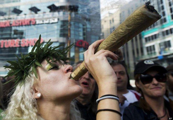 Unos 79 millones de europeos han probado en alguna ocasión la marihuana, droga que es legal en países como Holanda. (Archivo/AP)