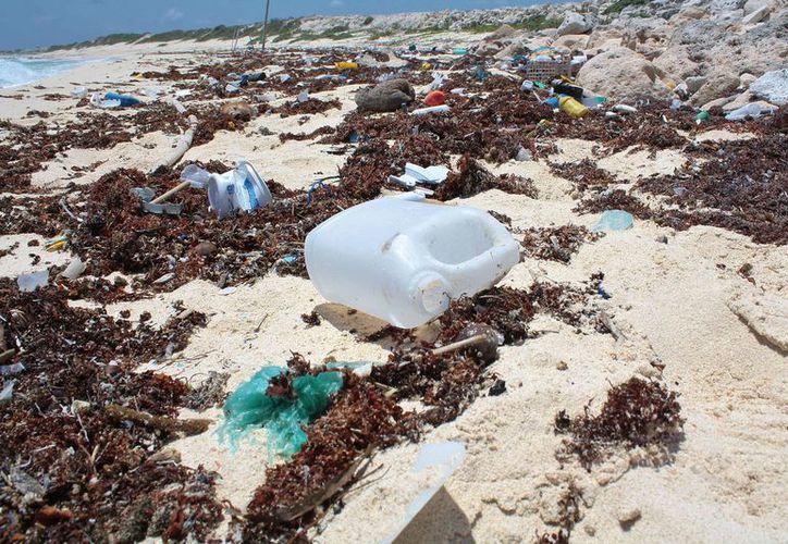 La basura es depositada por las corrientes marinas en las costas de la isla. (Gustavo Villegas/SIPSE)