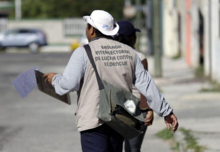 Las autoridades mantienen la prevención contra el dengue. (Chistian Ayala/SIPSE)