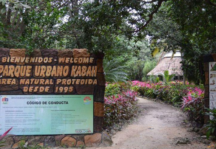 El parque, que tiene una dimensión de 41.48 hectáreas, cuenta con un presupuesto anual de un millón 200 mil pesos. (Israel Leal/SIPSE)