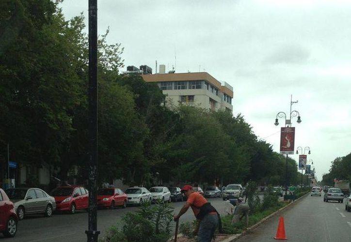 Los paraderos y el Paseo de Montejo (foto) registran cambios por el Carnaval. (SIPSE)
