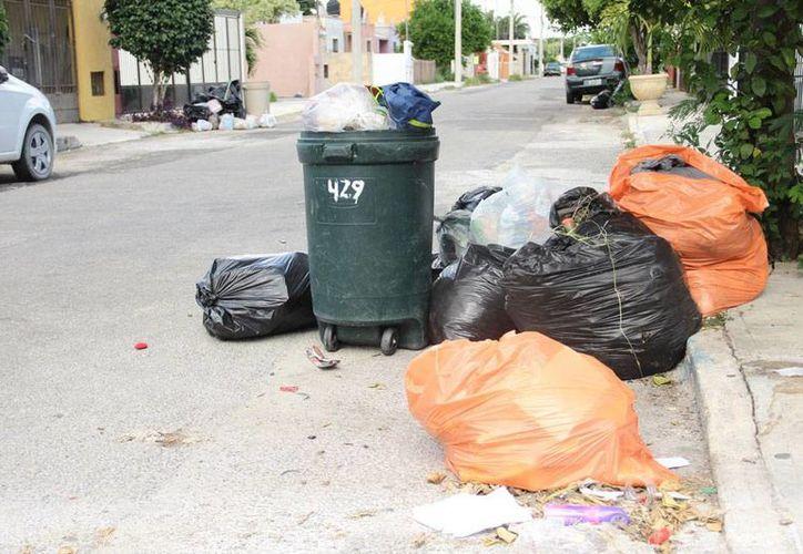 La basura acumulada en las colonias del poniente de la ciudad se ha convertido en un problema de Salud. Tras 7 días de no tener servicios, la Comuna inició un operativo. (Jorge Acosta/SIPSE)