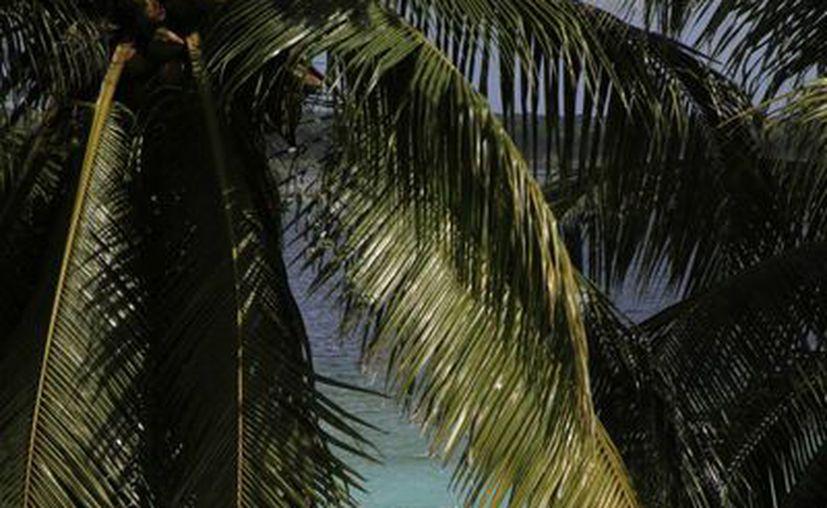 La Laguna de Bacalar recibe aguas negras de comercios de la costera. (Ángel Castilla/SIPSE)