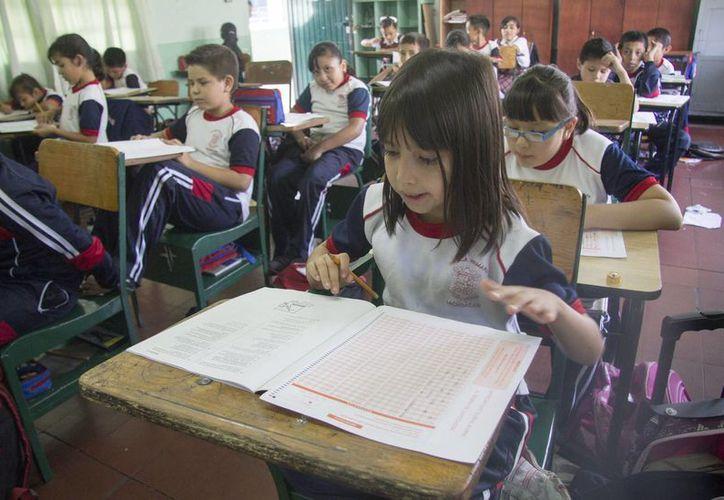 La prueba se lleva a cabo con mucho éxito en todos los estados de la República, excepto en Oaxaca. (Notimex)