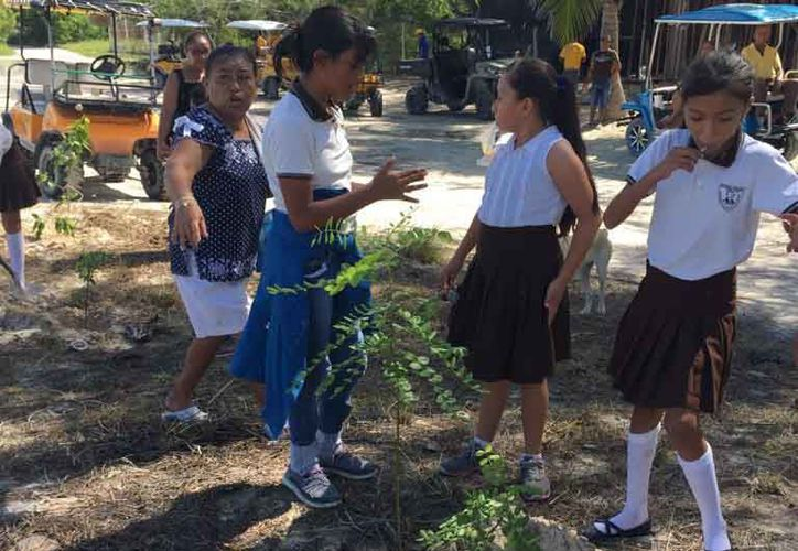 Participaron estudiantes en las labores de reforestación. (Gloria Poot/SIPSE)