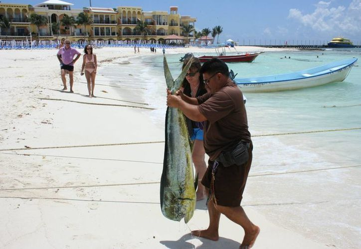 Pescadores de otros municipios llegan en Solidaridad. (Adrián Barreto/SIPSE)