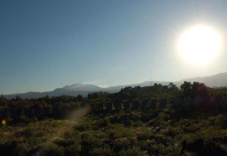 La Reserva Ecológica del Pedregal de San Ángel organiza diversas actividades para hacer conciencia sobre la importancia de conservar la naturaleza. (REPSA UNAM/Facebook)