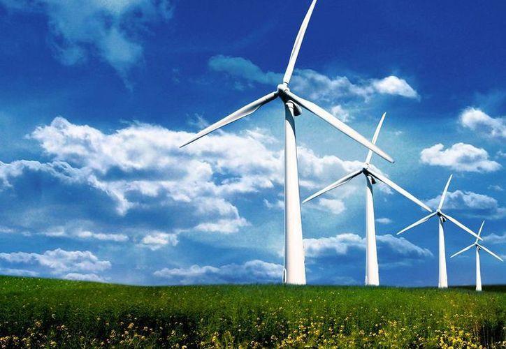 Consideran que las condiciones de Yucatán son favorables para producir energía renovable. (republica.com)