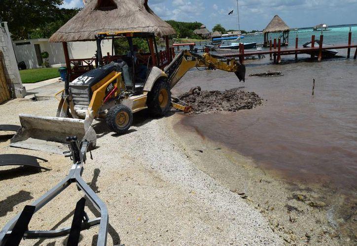 Por espacio de varias horas, un enorme trascabo retiró material de la orilla de la Laguna. (Javier Ortiz/SIPSE)