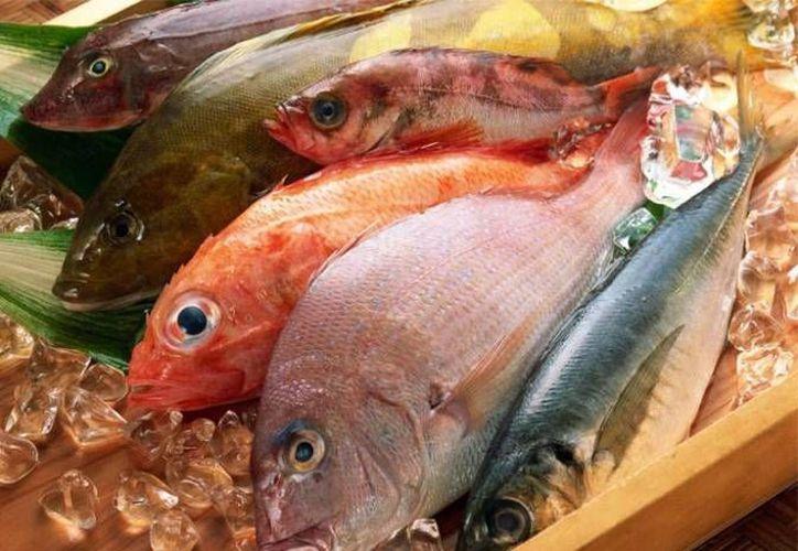En el municipio de Benito Juárez hay un padrón de 1 mil 071 establecimientos de pescados y mariscos. (Contexto/Internet)