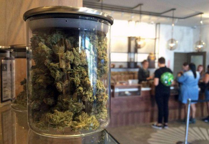 Imagen del 20 de abril del 2016 de un comercio que vende productos de marihuana para uso medicinal, en San Francisco. California. (Foto: AP/Haven Daley)