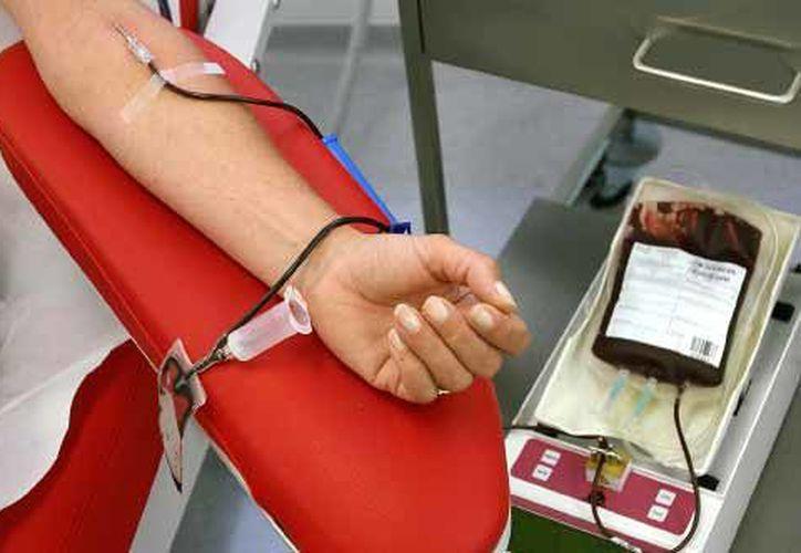 Una doctora le negó la posibilidad de donar sangre. (Sin Embargo)