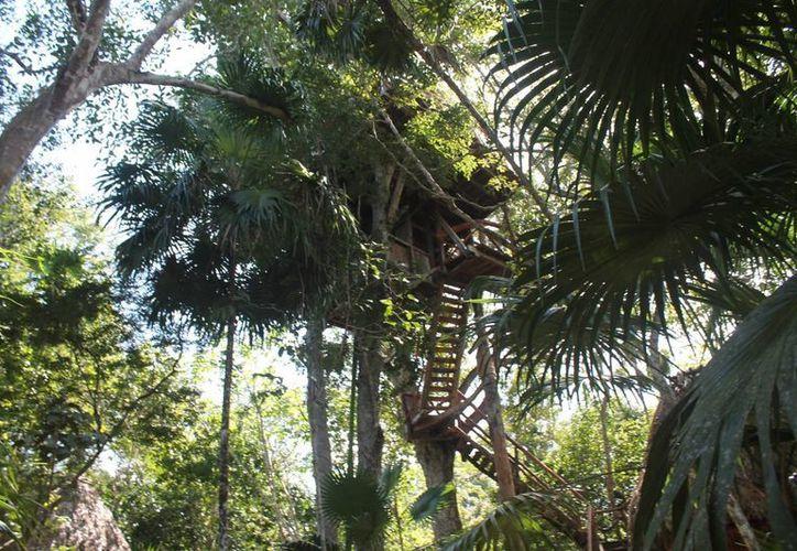 Reforzarán la promoción de los sitios donde se pueda practicar el ecoturismo. (Raúl Balam/SIPSE)