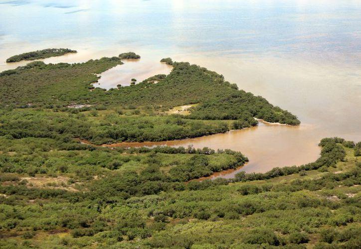 El Programa está dirigido a la conservación, desarrollo sustentable y regulación de actividades turísticas: Conanp. (Redacción)
