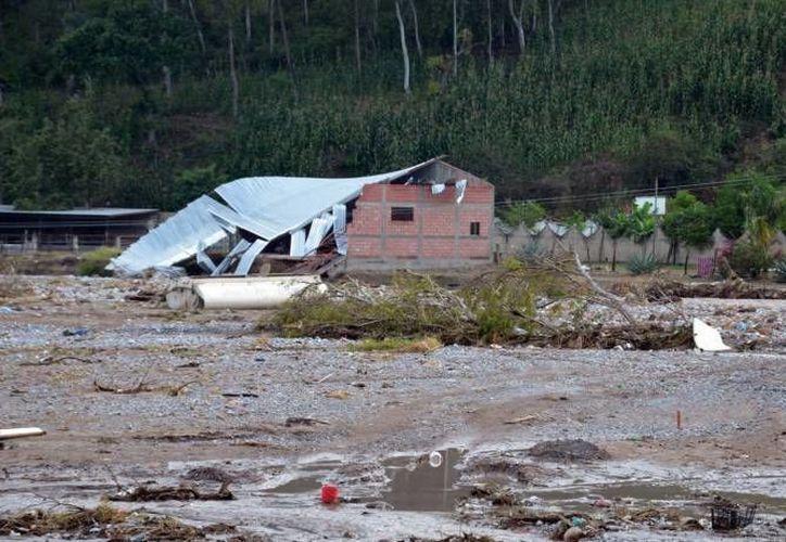 La ayuda para los damnificados se recolectó del 17 de septiembre al 3 de octubre. (Notimex/Foto de archivo)