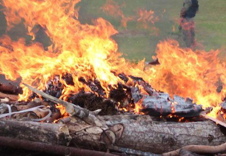 La marihuana incautada en los meses de octubre y noviembre fue quemada en los terrenos de la Guarnición Militar de Cozumel ayer. (Gustavo Villegas/SIPSE)