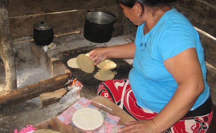 La Sedeso promueve el programa de estufas ecológicas ahorradoras de leña. (Joel Zamora/SIPSE)