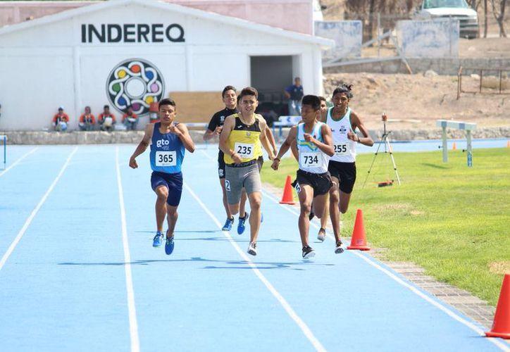 En los 800 metros Juvenil Menor, Fernando Sánchez Tadeo entró segundo en su heat clasificatorio.
