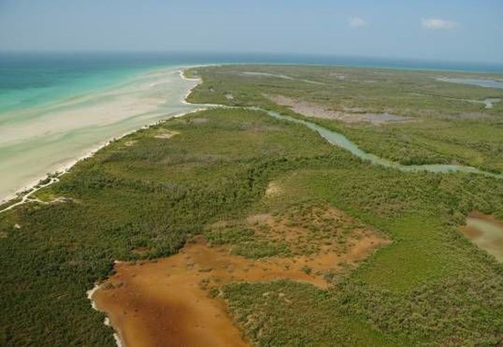 Yum Balam, reserva natural de Quintana Roo. (Redacción/SIPSE)