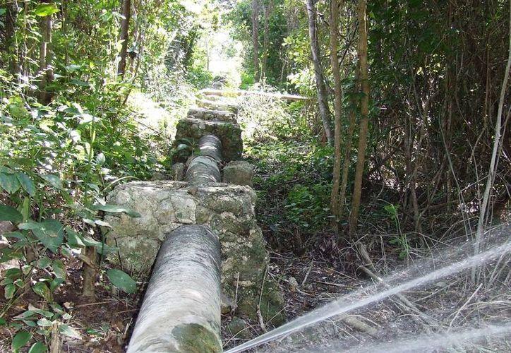 Habitantes de la colonia Ejidal y de Chemuyil denuncian la falta de agua de calidad en sus hogares. (Rossy López/SIPSE)