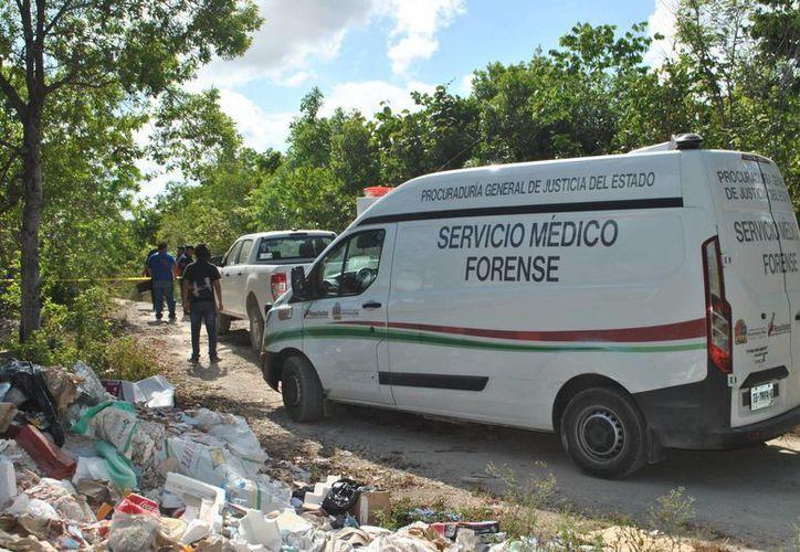 La persona fue hallada en un camino de terracería en la Colonia El Pedregal en Cancún. (Redacción/SIPSE)
