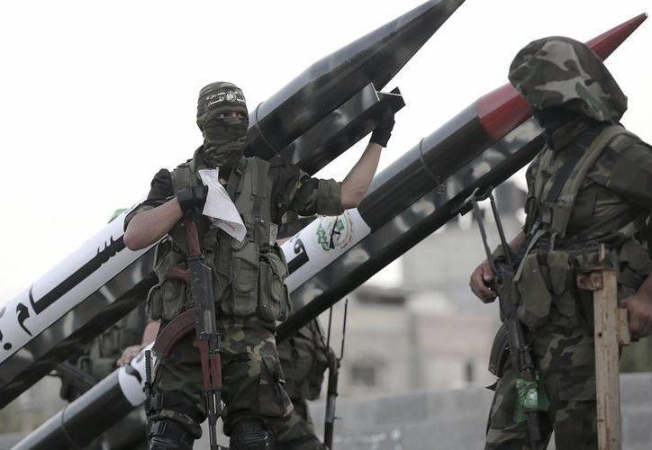 Militantes de Hamás capturaron a un delfín que portaba una cámara con la cual, según ellos, realizaba labores de espionaje para el estado de Israel. (EFE)