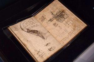 Exposición de Miguel Ángel y Da Vinci, en Bellas Artes
