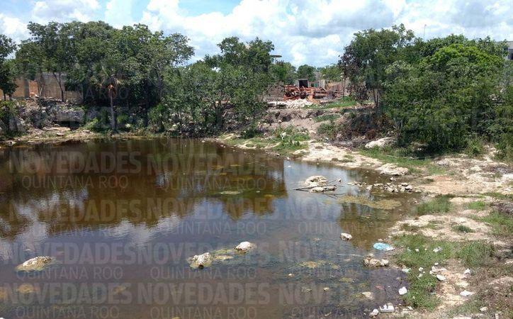 Es una contante la detección de casos de relleno de cenotes por impacto antropogénico. (Daniel Pacheco/SIPSE)