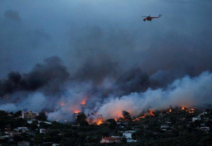 El humo de los incendios alcanzó a la capital del país. (Reuters)