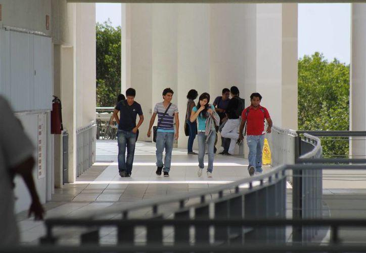 Los estudiantes podrían ocupar el edificio el próximo año. (Archivo/SIPSE)