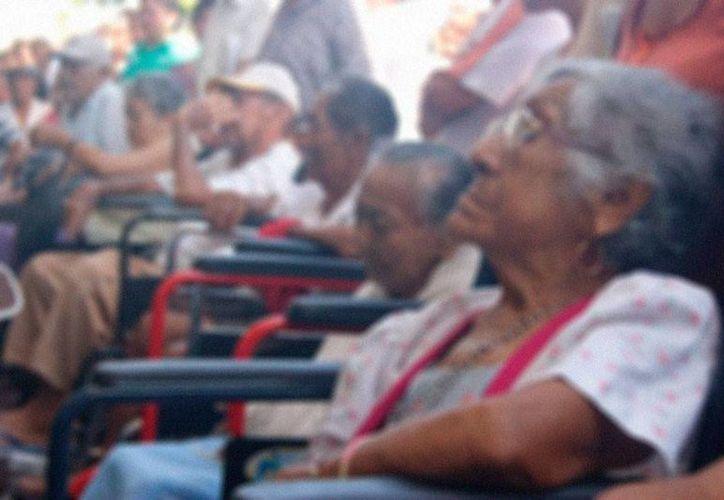Ancianos de Yucatán se quedarán sin pensión de Sedesol, debido a que muchos de ellos ya cuentan con apoyo del Gobierno. (Archivo/Milenio Novedades)