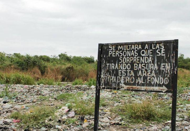 Se han suscitado algunos siniestros en el basurero, debido a que los ciudadanos queman indebidamente los desechos en el área. (Edgardo Rodríguez/SIPSE)