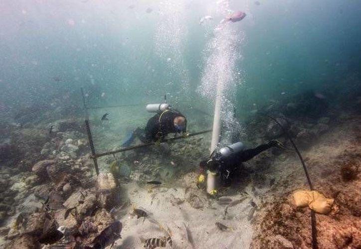 Un equipo de arqueólogos submarinos hallaron y recuperaron los restos del naufragio más antiguo de la Edad de Oro de la Exploración de Europa en las costas de Omán. (dn.pt)