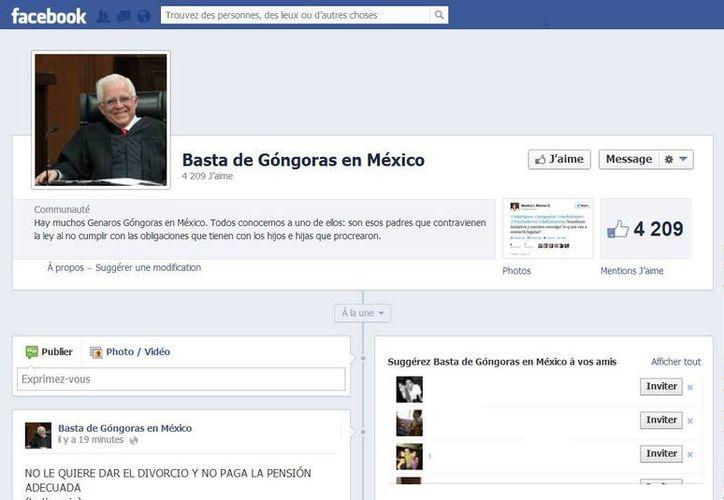 """La página lleva más de cuatro mil ''me gusta"""". (Captura de pantalla)"""