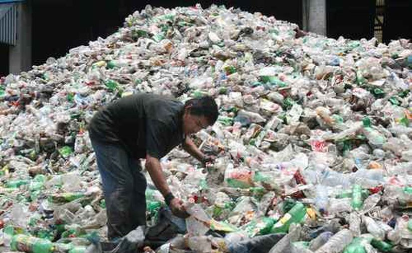 En fechas recientes se ha alertado por la creciente producción de plástico que en muchas ocasiones, termina en el mar. (La Jornada)