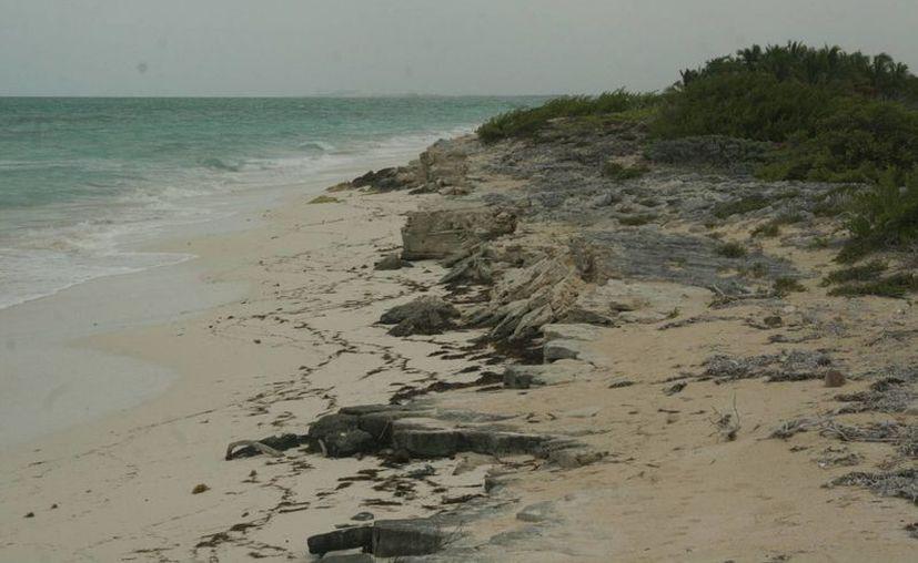 El hotel se construirá en un terreno que goza de una playa virgen. (Tomás Álvarez/SIPSE)