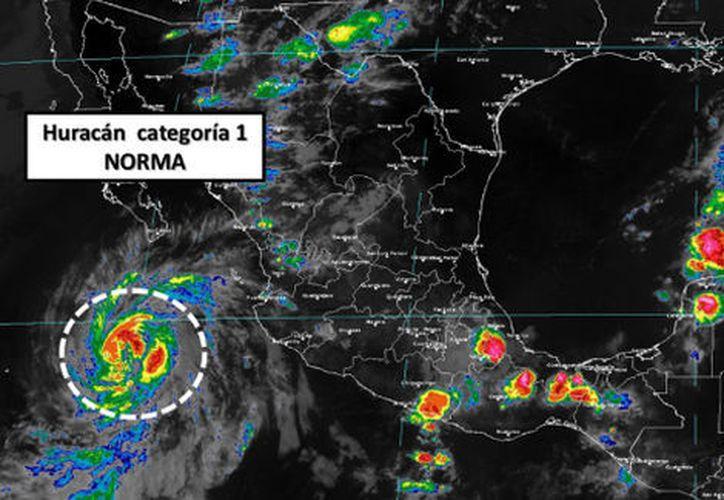 Se prevé que Irma toque tierra en Baja California Sur como tormenta tropical. (Foto: Milenio)