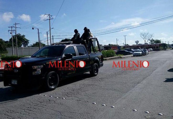 El fuerte operativo fue realizado por la Policía Estatal. (Milenio Novedades)