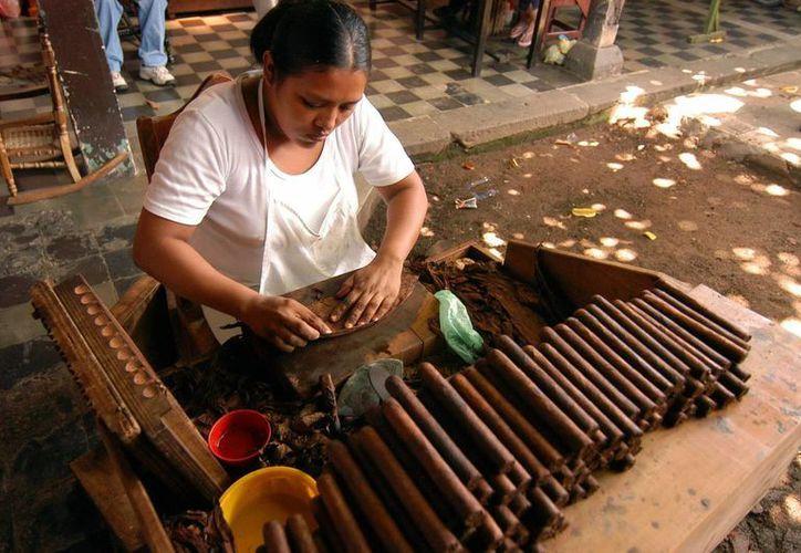 La ATN aseguró que Nicaragua es el país del mundo con mayor crecimiento de ventas de puros en los últimos años. (EFE)
