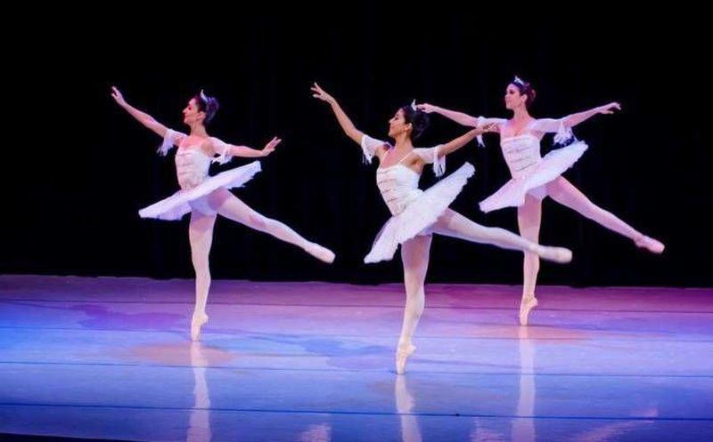 invitan al seminario internacional de danza en mérida noticias de