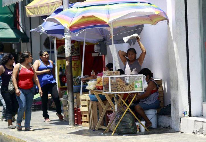 Entre los nuevos negocios formales están: cafeterías, carritos de hot-dogs y centros de cómputo. (Ayala/SIPSE)