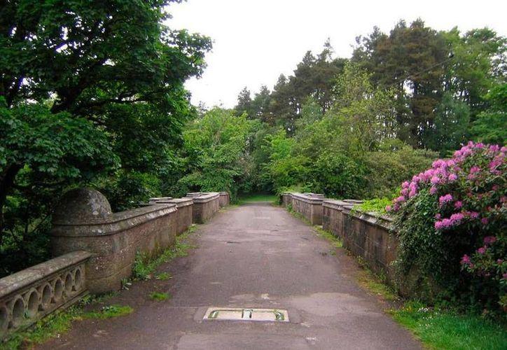 El puente donde los perros se suicidan: el Overtoun, en Milton, Escocia. (mundoesotericoparanormal.com)