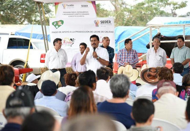 Juan José Canul Pérez, titular de la Seder, en su visita a Tizimín, donde se entregaron apoyos a productores lecheros. (Milenio Novedades)