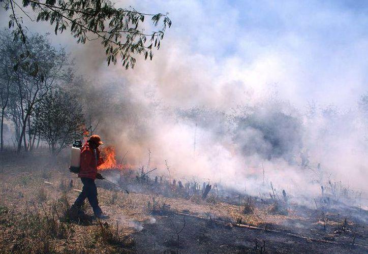 El incendio provocado por una quema de basura en Dzidzantún no dejó víctimas ni lesionados. (SIPSE)