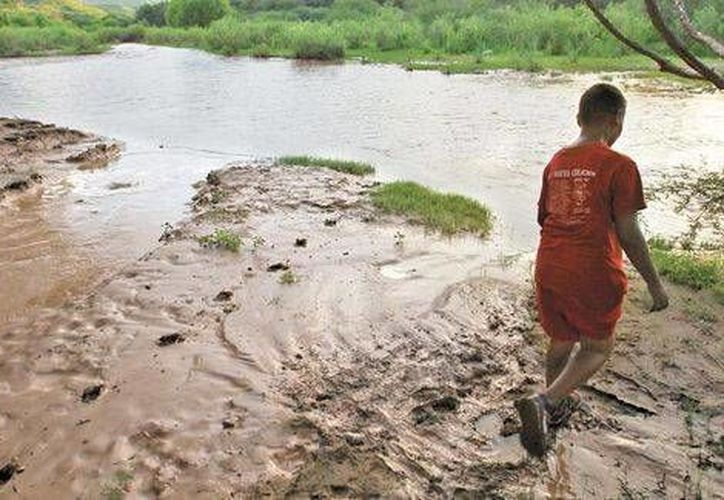 Un joven camina por uno de los ríos afectados por el derrame de sulfato de cobre de la mina propiedad de Grupo México. (Héctor Téllez/Milenio)