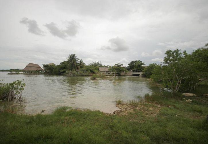 En1996 se reportó el primer caso de mortandad de bagres en la Bahía de Chetumal. (Redacción/SIPSE)