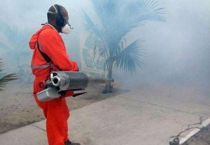 La Secretaría de Salud mantendrá las acciones de fumigación y trabajo de brigadistas casa por casa, en sitios donde hay aviso de casos probables. (Milenio Novedades)